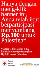 Support Palestine